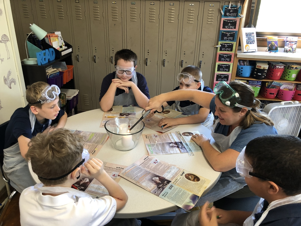 6th graders at Roosevelt conduct science experiments with their teacher Ms. Rongo #sgfs #engaged #learning
